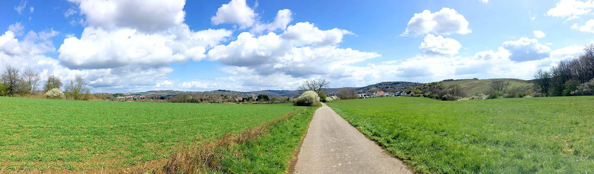 fruehlingswiese_wiebelskirchen.jpg
